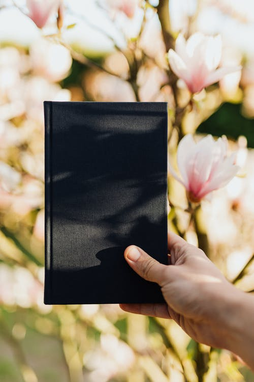 Crop person with black notebook in hand in blossoming garden