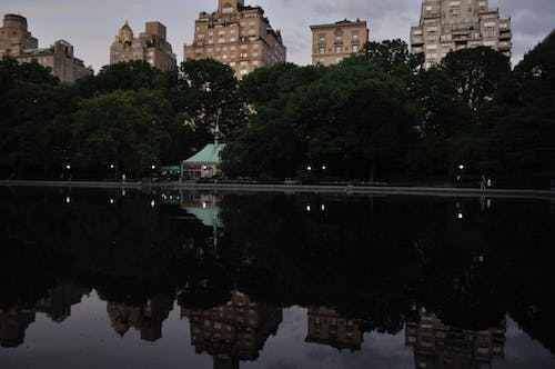 Free stock photo of central park, city sunset, new york city, nyc