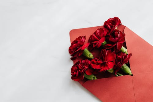 Red Flowers on Red Envelope