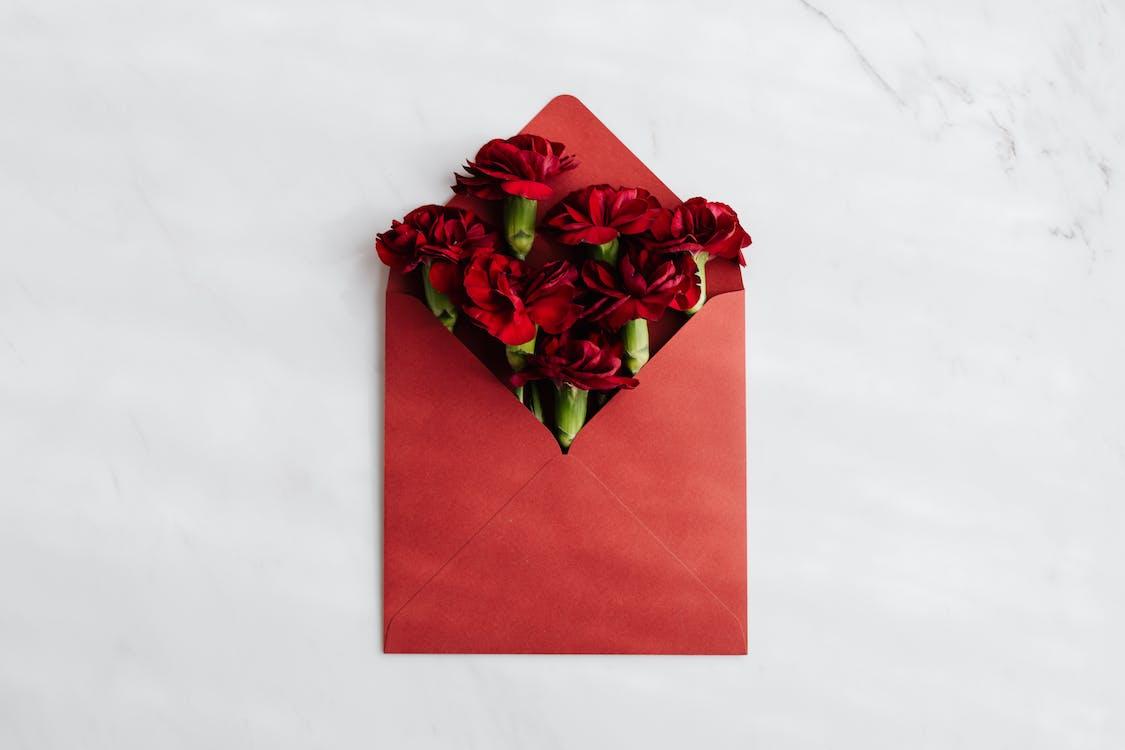 Fotos de stock gratuitas de abierto, amor, aniversario