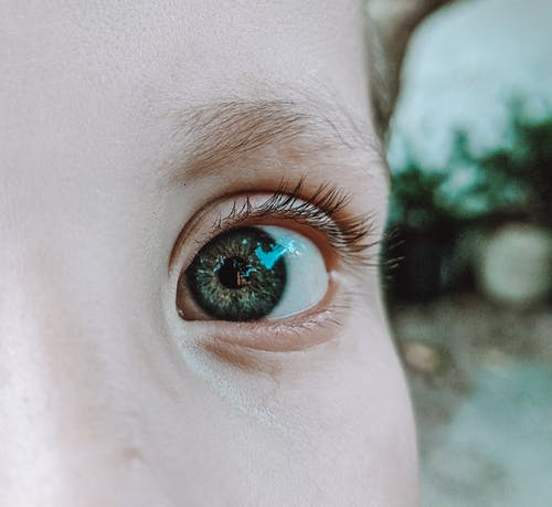 Free stock photo of baeutiful eyes, big eyes, brazil