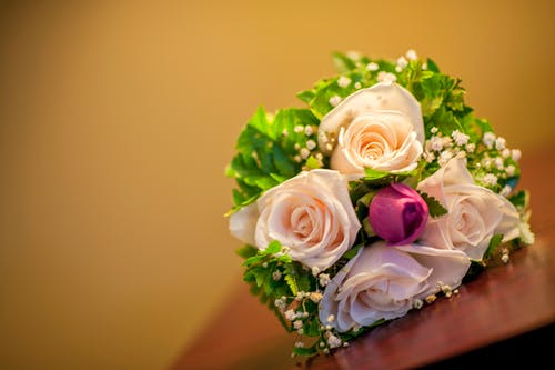 Photos gratuites de boda, flor, ramo
