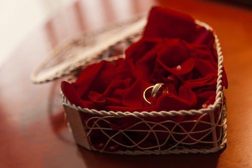Photos gratuites de anillos, bague, cœur, mariage