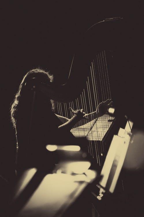 Gratis stockfoto met akoestisch, arpa, concert