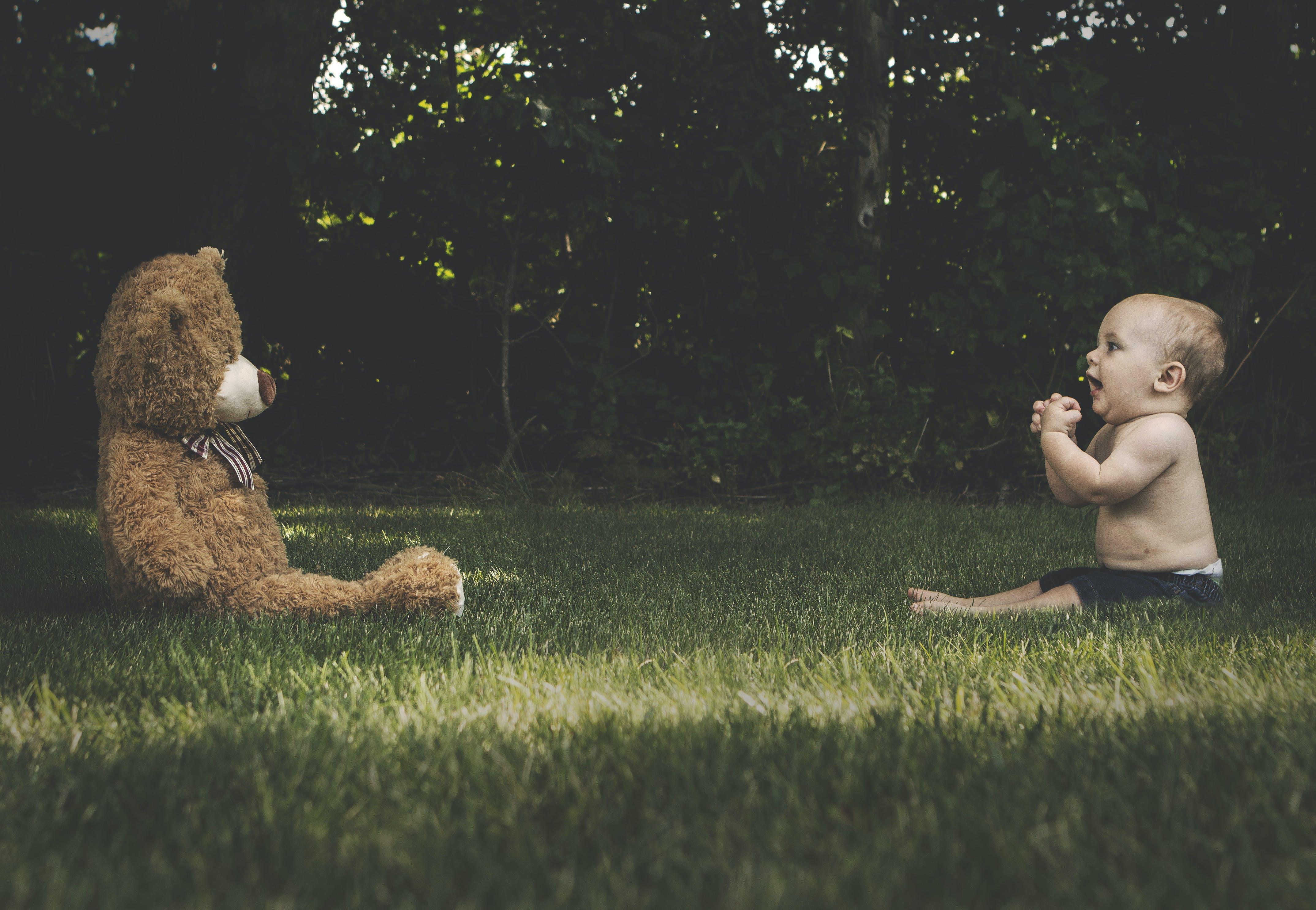 Free stock photo of child, childhood, teddy bear, baby