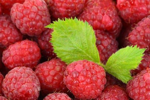 Ảnh lưu trữ miễn phí về khỏe mạnh, màu đỏ, món ăn, quả mâm xôi