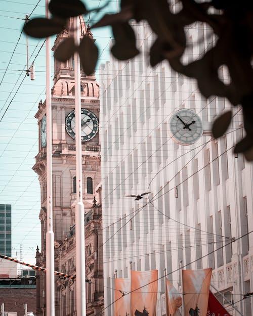 Free stock photo of Bourke Street, city, clock