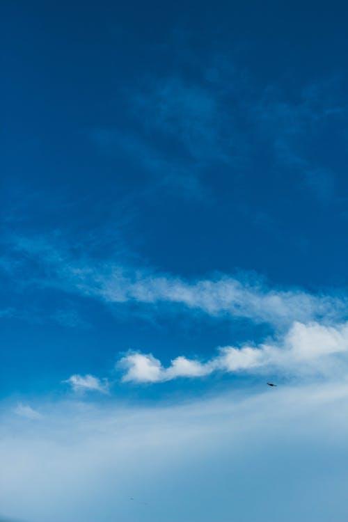 Fotos de stock gratuitas de alto, ambiente, atmósfera, cielo