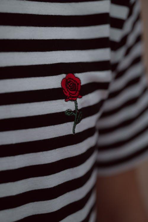Foto profissional grátis de camiseta, close, estético, filas