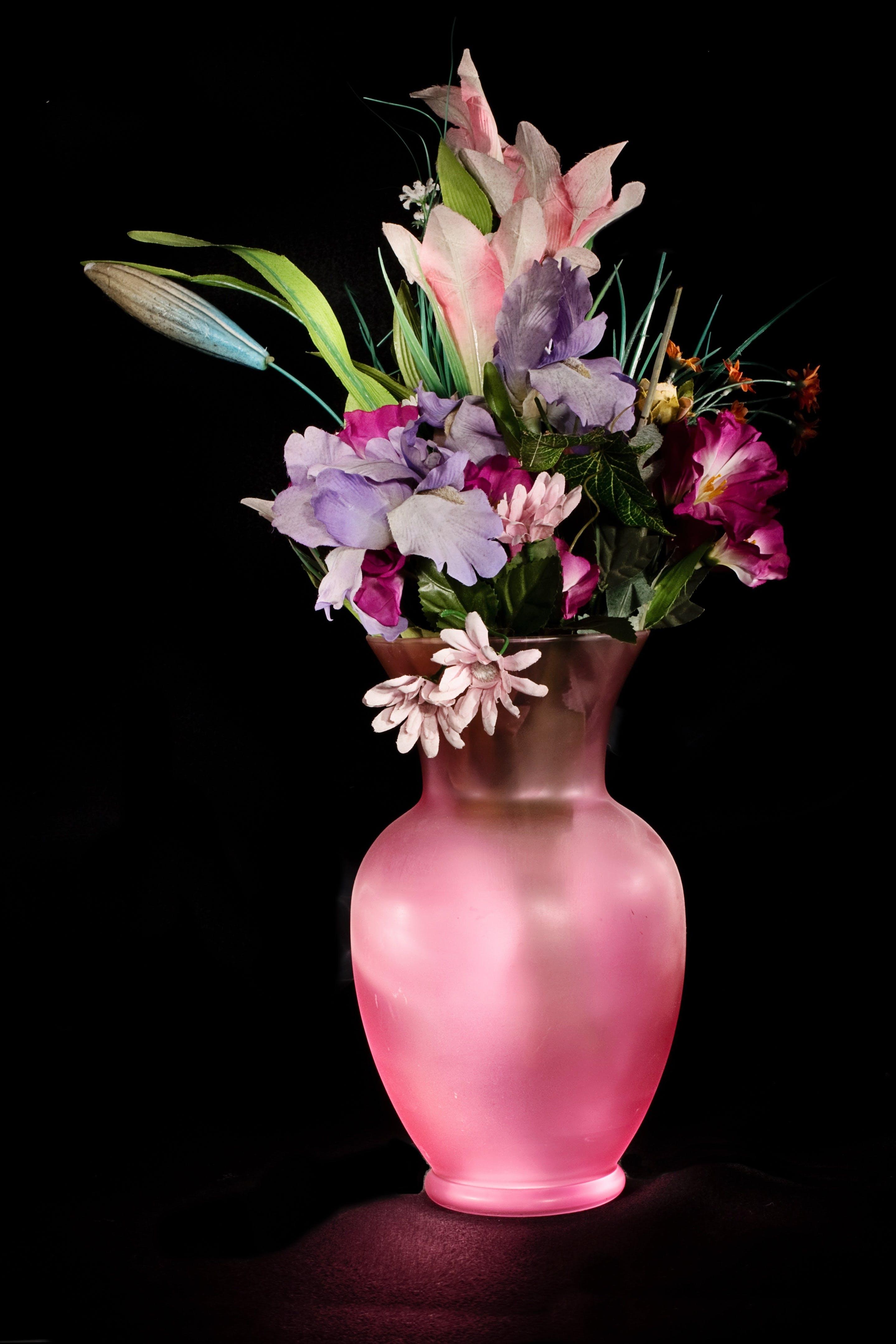 Kostenloses Stock Foto zu blumen, pink, blühen, blüte