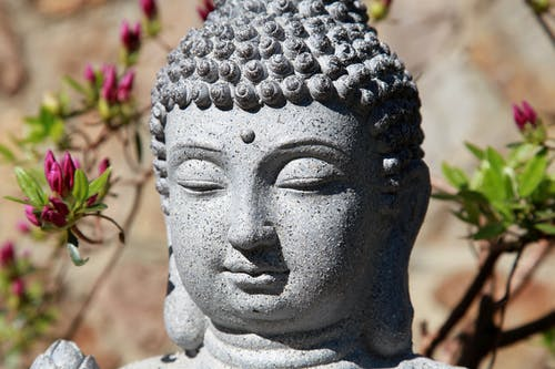 Free stock photo of bouddha, calme, meditation, statue