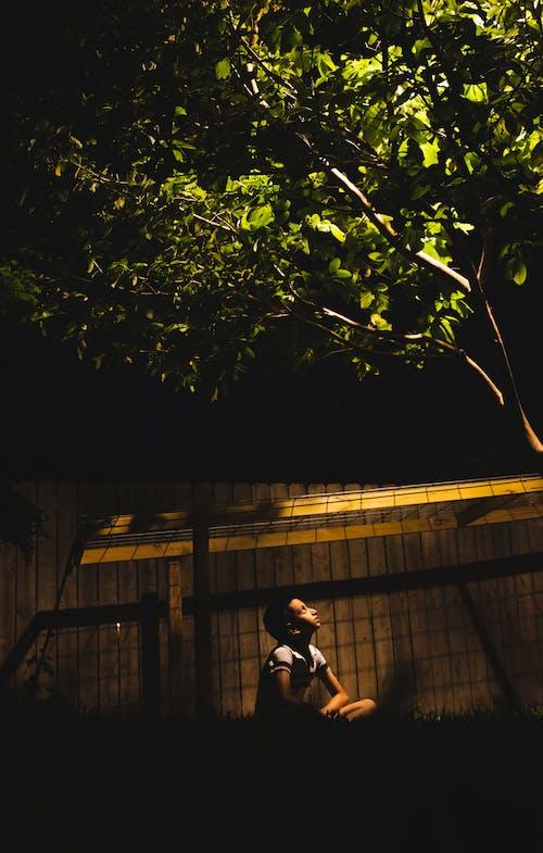 Darmowe zdjęcie z galerii z chłopak, ciemny, czas wiosny, drewniany płot