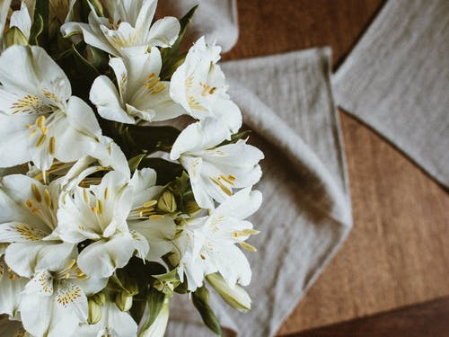 From above bunch of aromatic fresh lily of the Incas flowers with tender white petals arranged on table