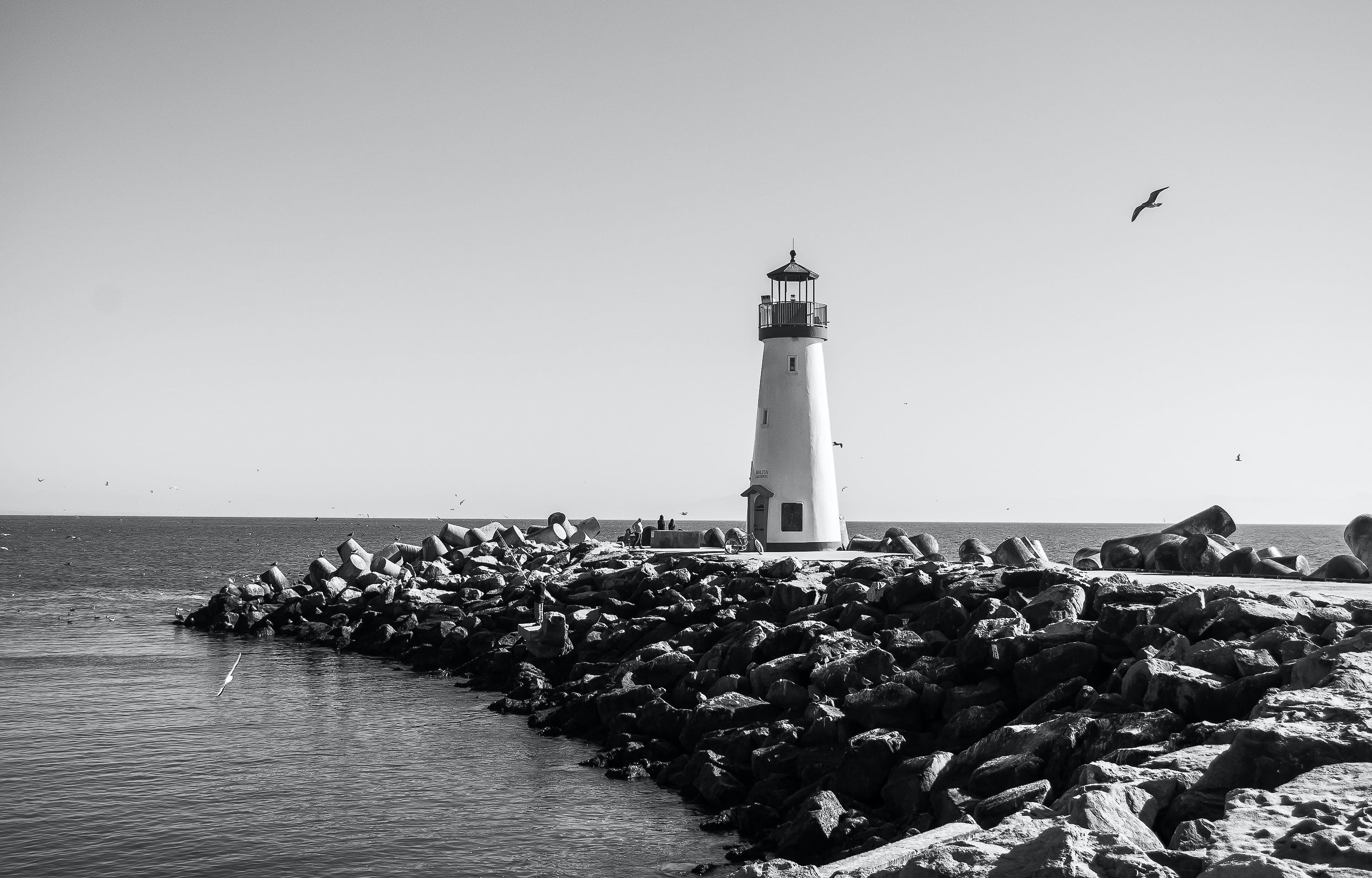 Grayscale Photography of Bird Flying Near Lighthouse by the Sea
