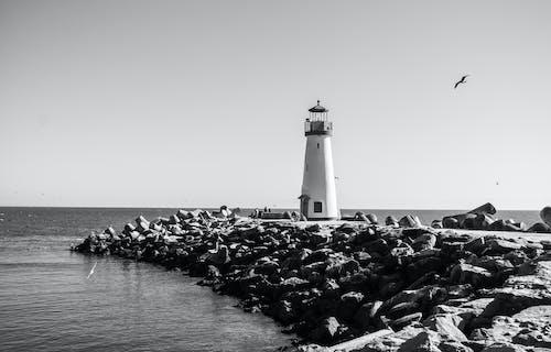 岩石, 岸邊, 海, 海洋 的 免費圖庫相片