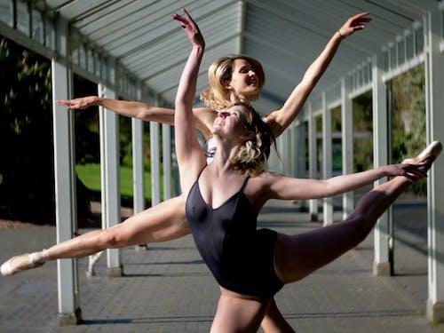 Kostnadsfri bild av dansare, vackra kvinnor