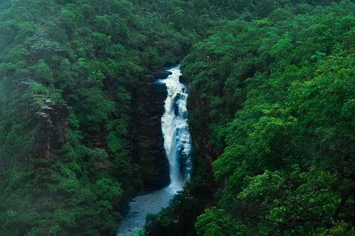 From above scenery view of rapid white cascade between lush green mounts with woods