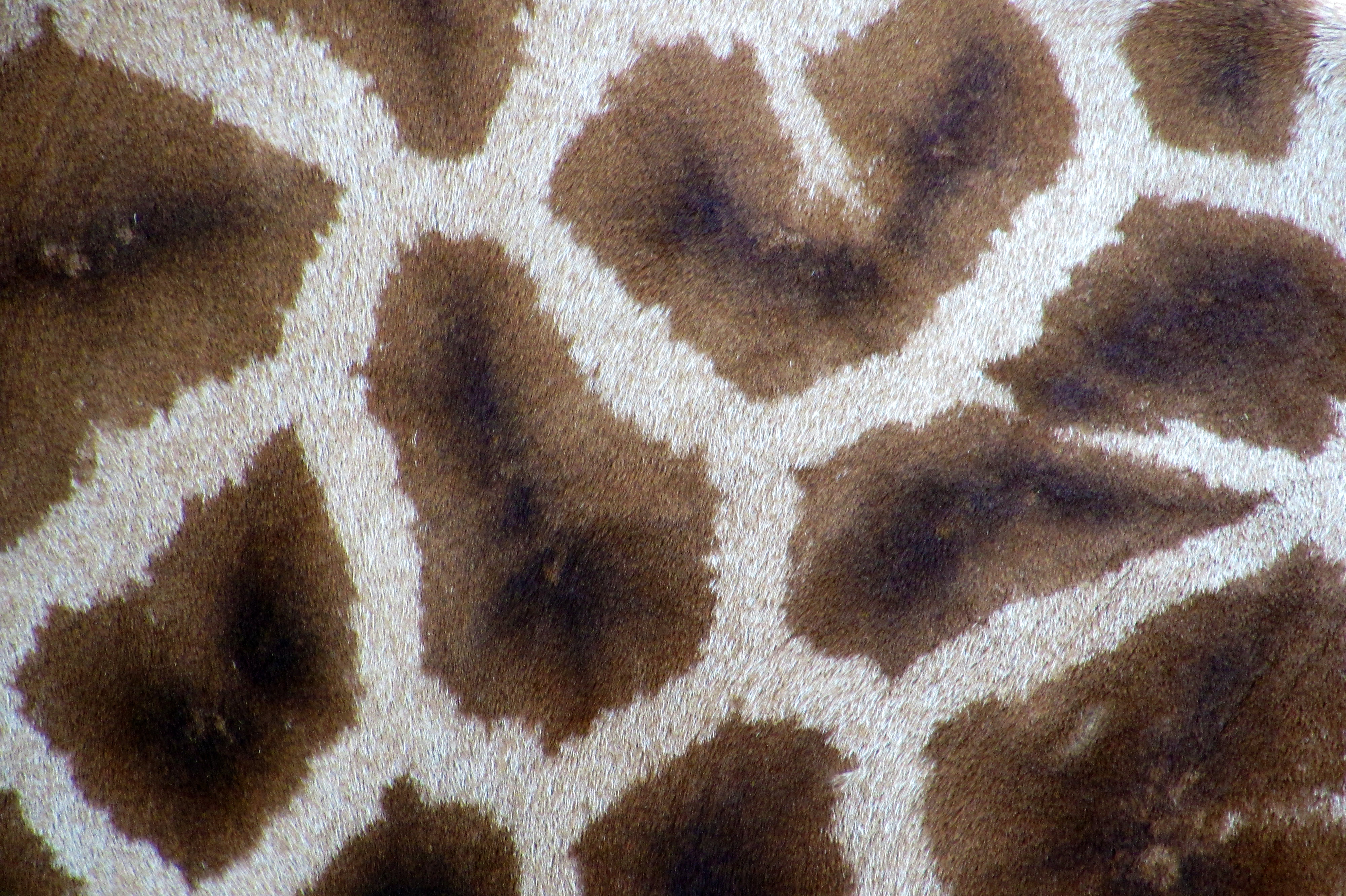 fourrure, girafe, motif