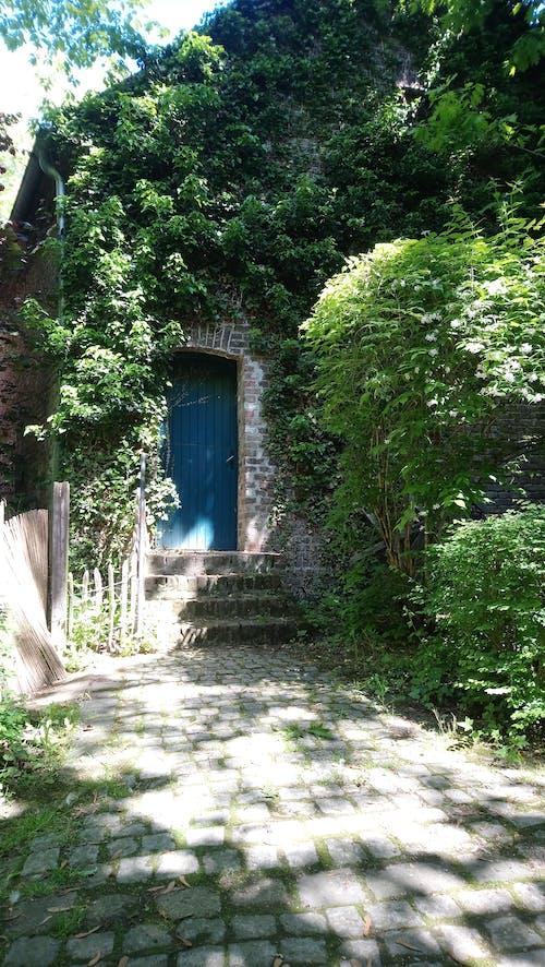 Free stock photo of door, Tür