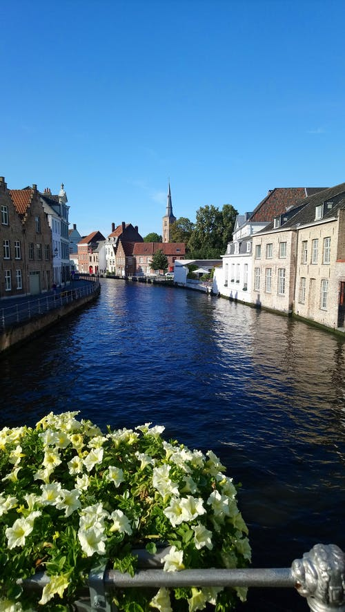 Free stock photo of brugge, gebäude, river