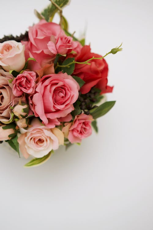 Bright blooming rose bouquet on white background