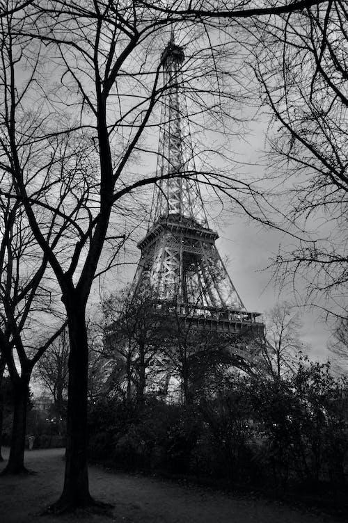 Free stock photo of eiffel, eiffel tower, tour
