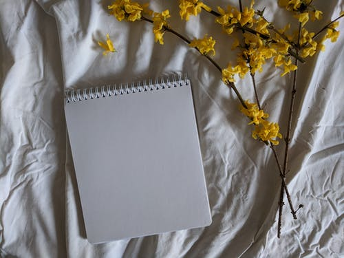 White Paper on Yellow Flowers