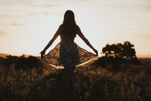 คลังภาพถ่ายฟรี ของ alegria, amanhecer, árvore, danca