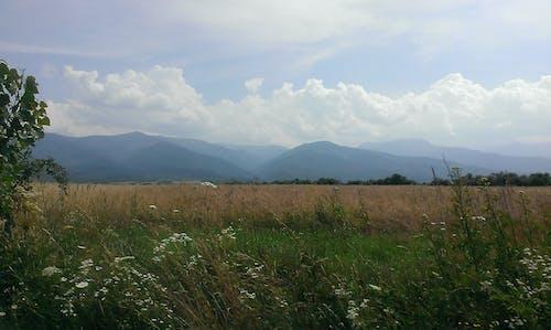 Free stock photo of carpathian mountains, high, high mountains