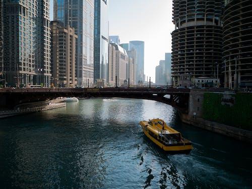 シカゴ, ツタ, ブリッジ, ボートの無料の写真素材