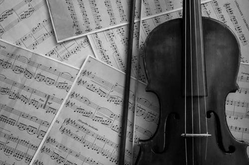 Free stock photo of fiddle, instrument, music