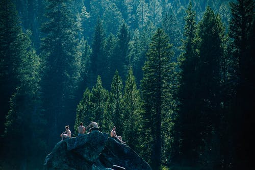 People Sitting on Rock Formation Near Green Trees