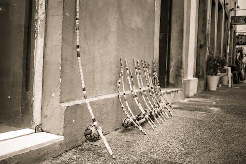 Imagine de stoc gratuită din afro, Brazilia, centro cultural, city preto e branco