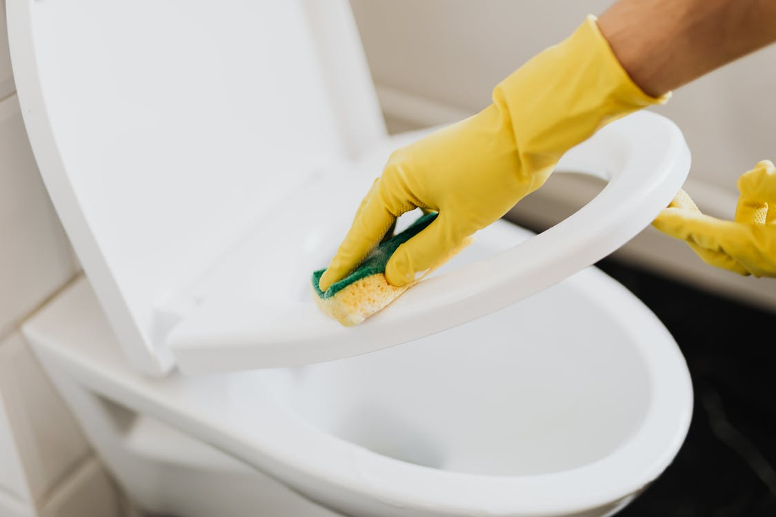 Crop person cleaning toilet seat with sponge