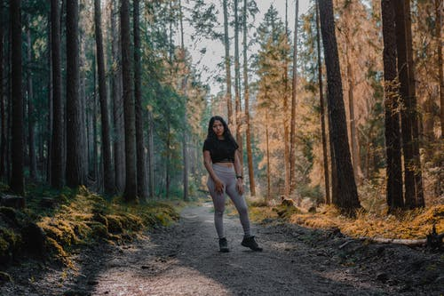 Free stock photo of active wear, forest, forest path, forest trail