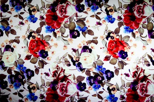 White Blue and Red Floral Textile