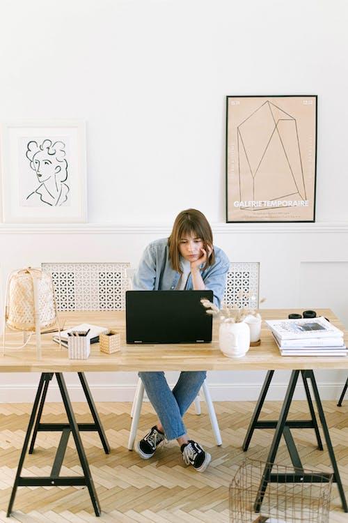 คลังภาพถ่ายฟรี ของ การทำงาน, การมอง, การสัมมนาทางเว็บ