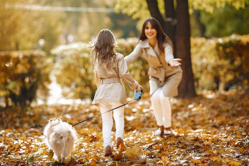 açık hava, alımlı, anlamlı, anne içeren Ücretsiz stok fotoğraf