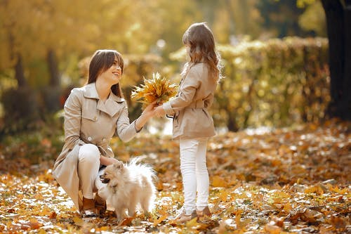 Cute girl presents maple leaves bouquet to mother in park