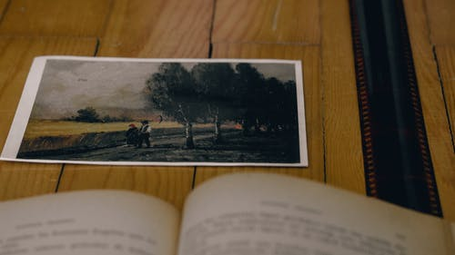 Free stock photo of açık, açık kitap, ağaç, ahşap zemin