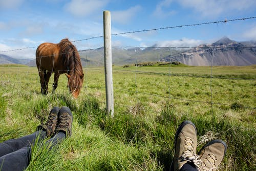 Person in Green Pants and Brown Leather Boots Sitting on Green Grass Field