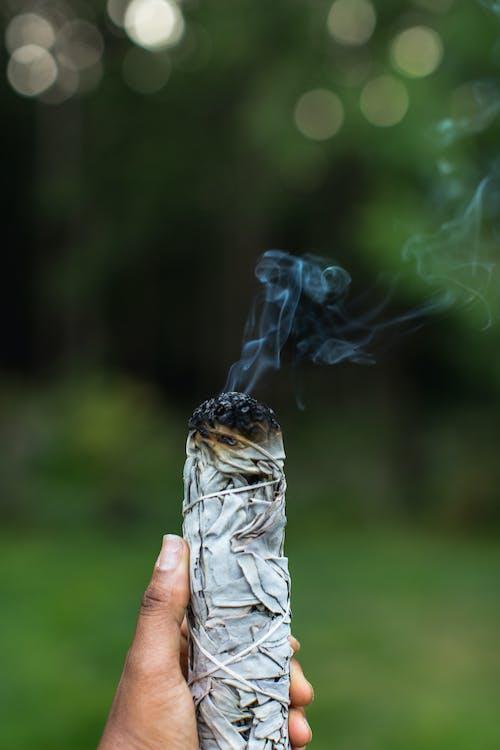 Free stock photo of burning, sage, spiritual healing