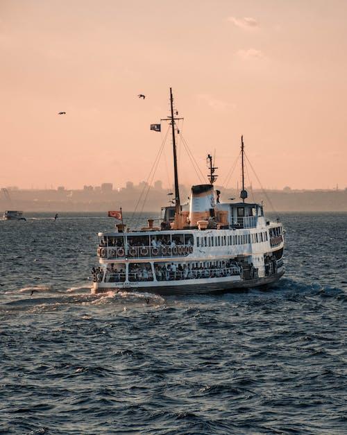 Cruise ship sailing in sea during sundown