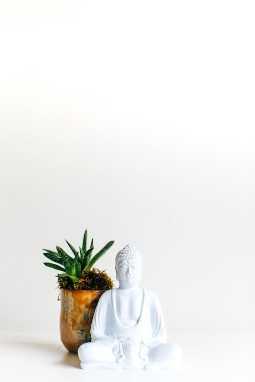 White Ceramic Angel Figurine Beside Green Plant