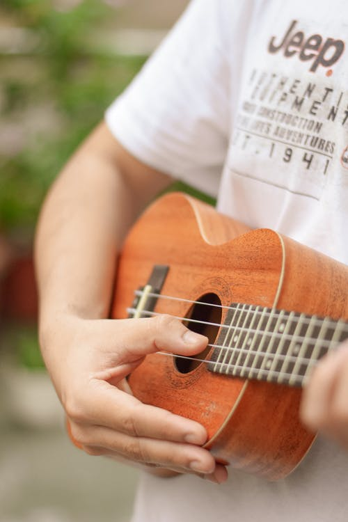 Anonymous person playing ukulele in park