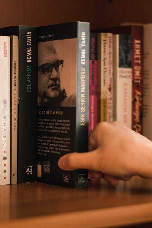 Unrecognizable person choosing book on bookcase in flat