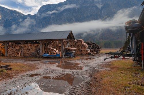 Fotos de stock gratuitas de abandonado, agua, al aire libre, cabaña