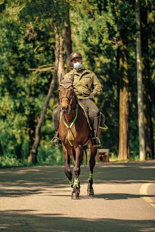 Gratis stockfoto met activiteit, anoniem, asfalt