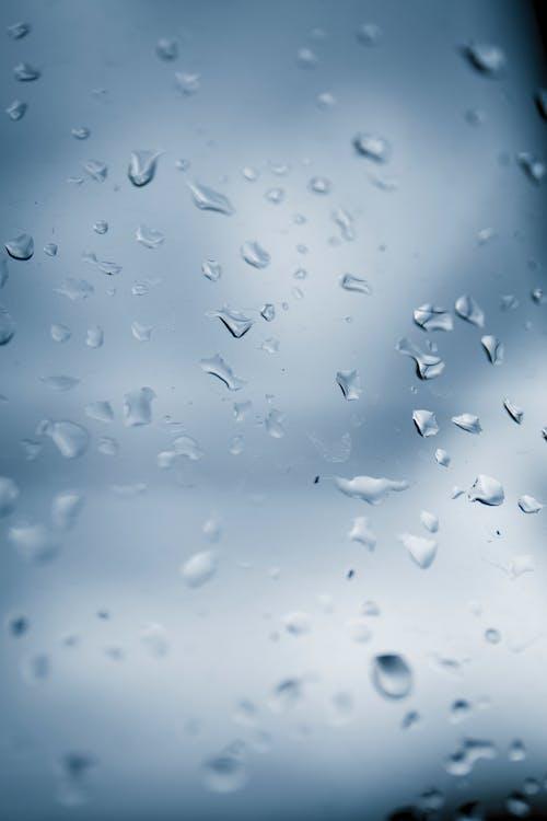 Kostenloses Stock Foto zu agua de lluvia, gota de lluvia, gotas de agua