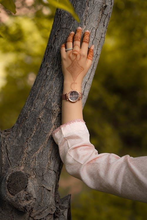 Ảnh lưu trữ miễn phí về backgound mờ, Bo mạch, cánh tay, cây